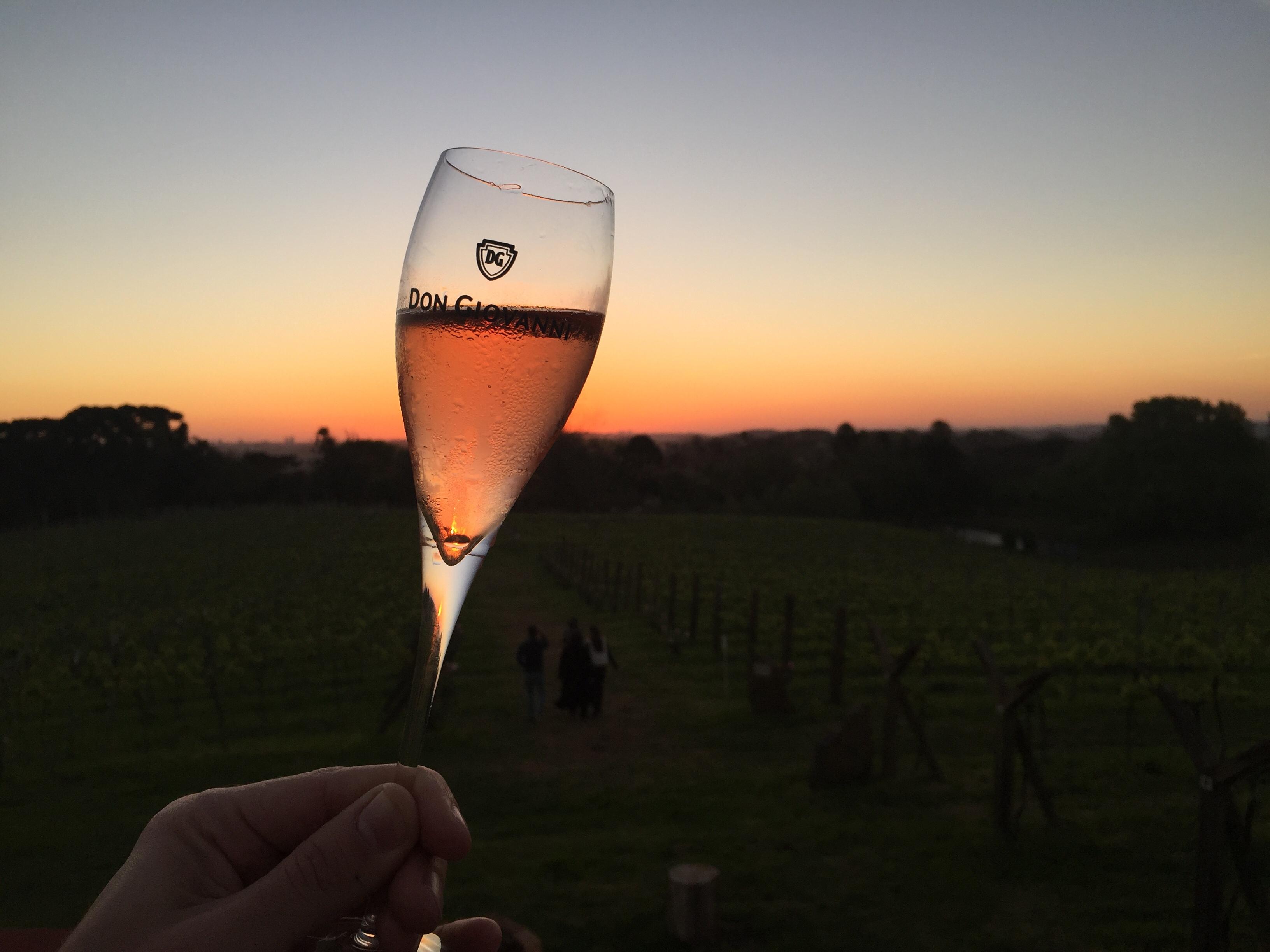 Seis vinícolas para conhecer na Serra Gaúcha